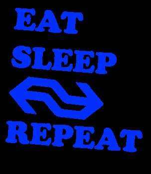 eatsleepns1